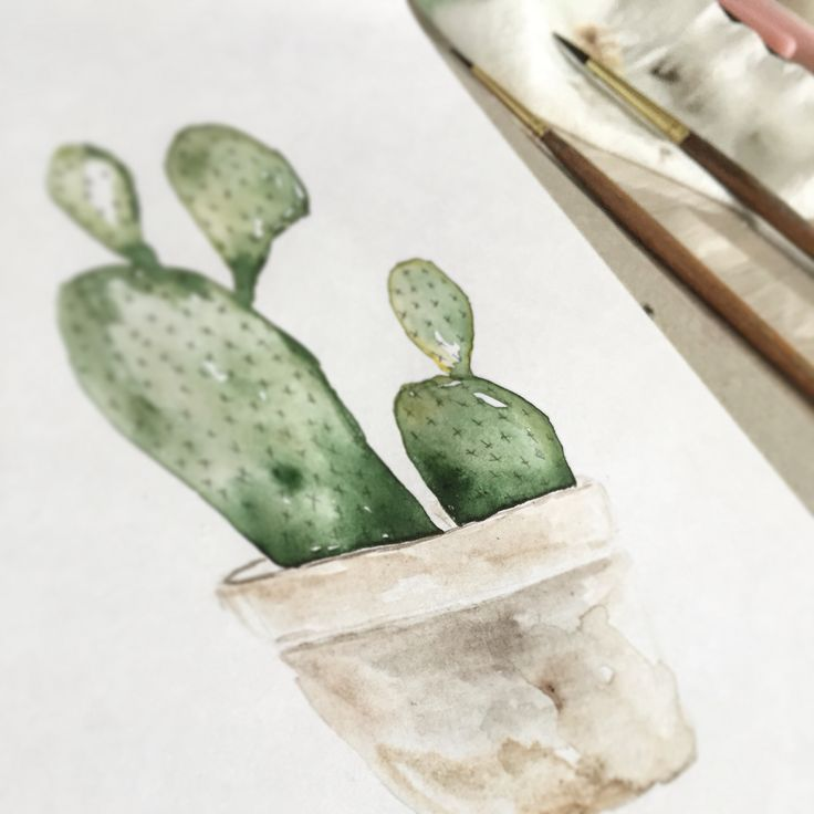 En af mine nye akvareller kaktus