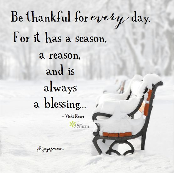 Image result for winter joy quotes