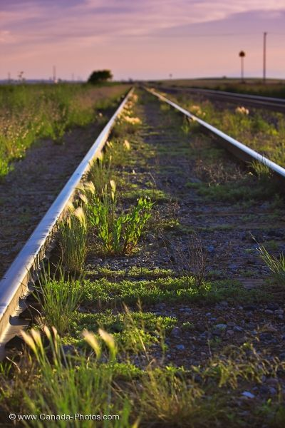 Picture of the railway tracks running across the prairie landscape in Morse, Saskatchewan.
