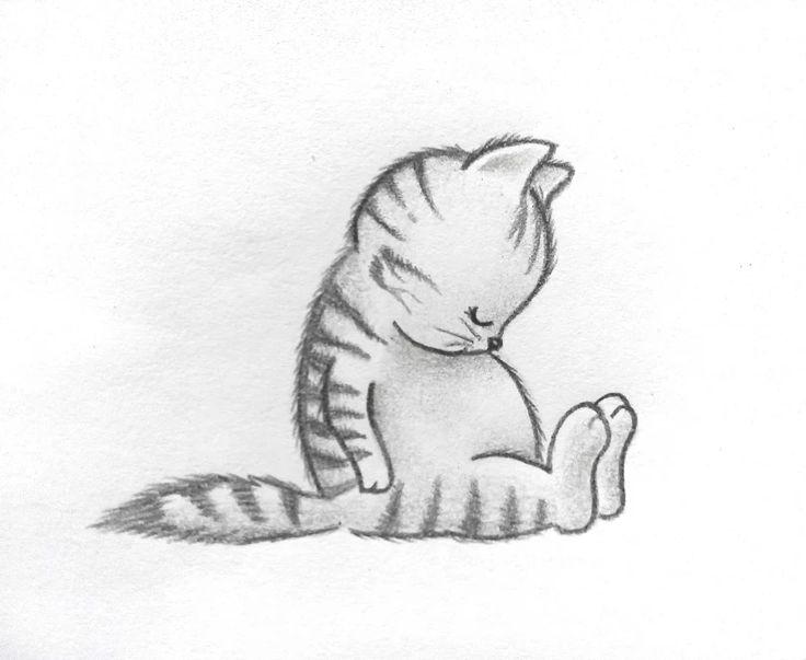 Foto: #cute #kitty