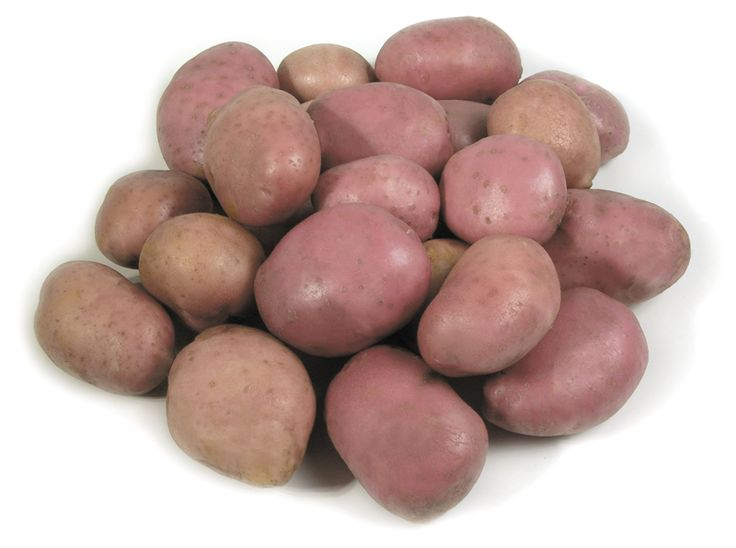 Burgonya piros lédig | Termék | www.vitaminszalon.hu