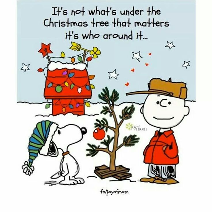 It's not what's under the Christmas tree that matters,  it's who is around it