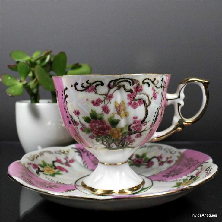 17 Best Images About Teacups Royal Halsey On Pinterest
