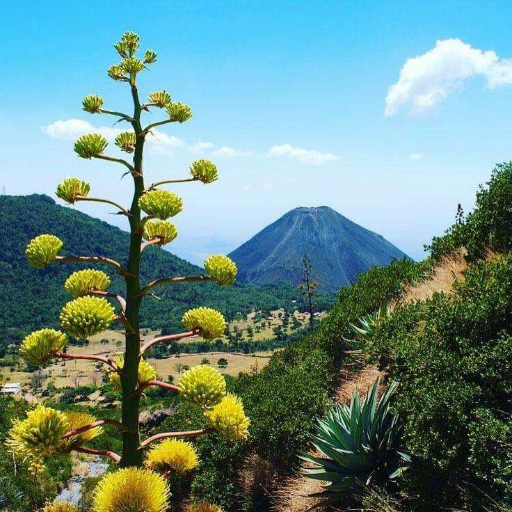 Volcán de Izalco, desde el Cerro Verde, Sonsonate. El Salvador.