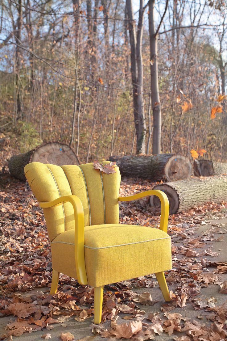 Piu armchair - autumn in the park - Swarzedz Lake