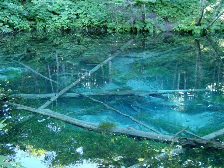 神の子池(北海道・裏摩周湖湧水)