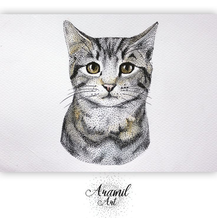 Cat drawing, created by using about a thousand dots and colored with watercolour pencil. Art by Petra Jánosi. Come and check on FB. :)  https://www.facebook.com/aramilart