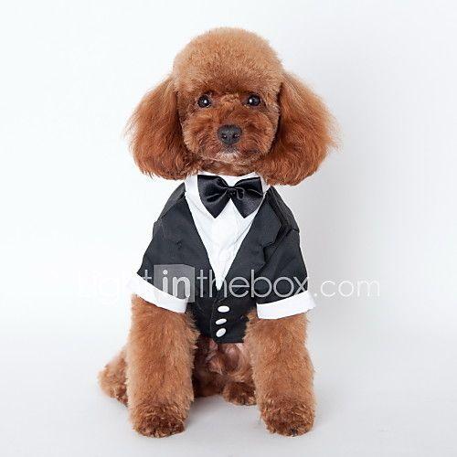 Gato Perro Esmoquin Ropa para Perro Bonito Cosplay Boda Lazo Negro Disfraz Para mascotas 2018 - $9.99