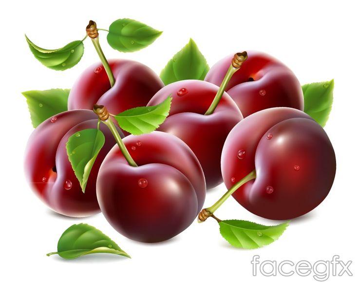 Red Delicious diseño cerezas vector