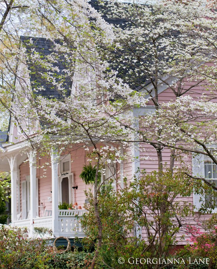 Cottage home in the Spring.