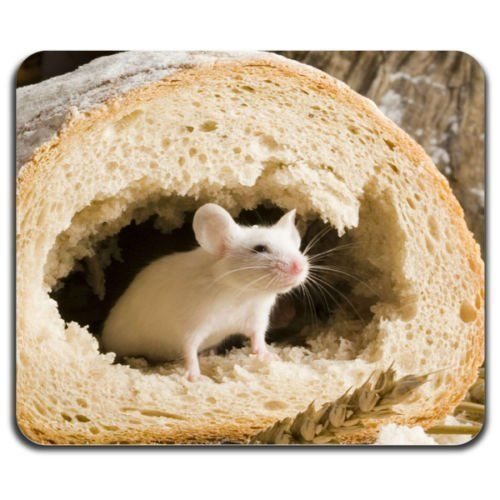 Cute Mouse Inside Bread Food Lovely Rodent Cool Computer Mouse Pad