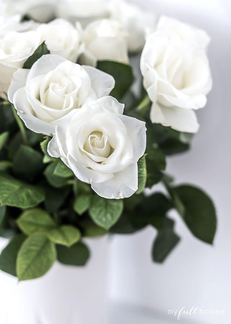 white roses-2