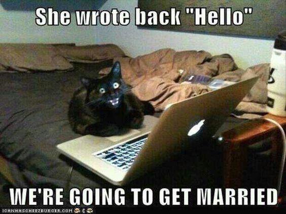 Funny New Relationship Meme : Best funny lovely memes images ha ha funny