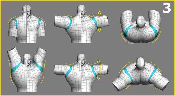 遊戲模型佈線對動作變形之影響(2-2)-肩膀篇