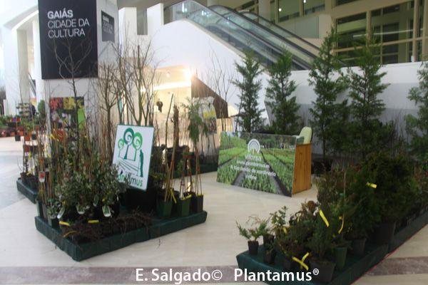 Nuestro stand en la Feria Exposición Arco Verde celebrada en la Cidade da Cultura de Galicia en Marzo 2014