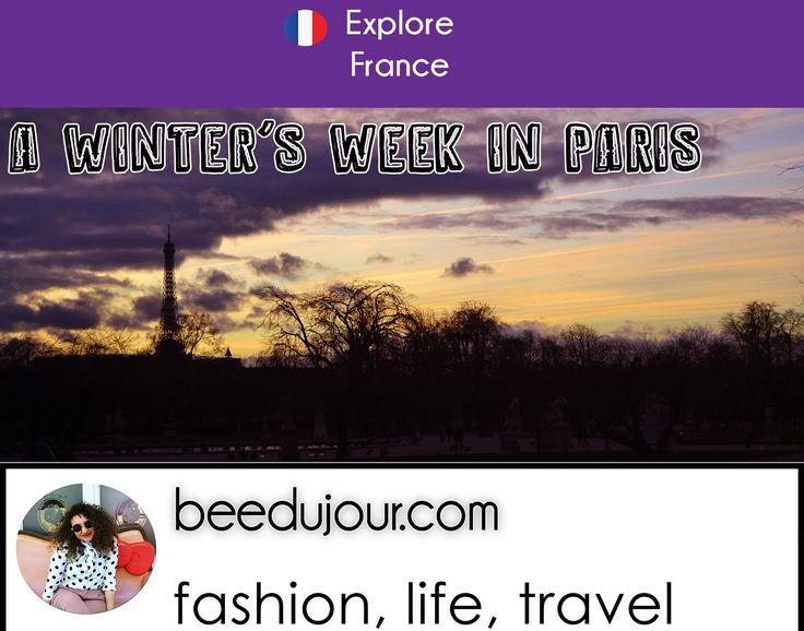 A Winter's Week in Paris
