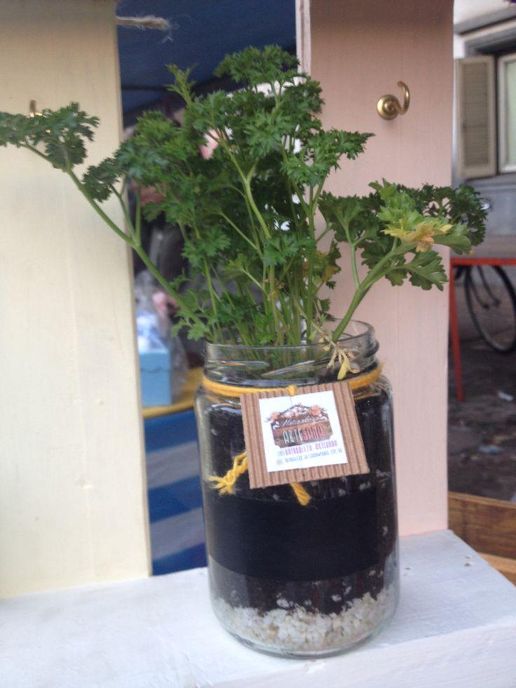 Para tener tu aromatica fresca en la cocina. El sustrato permite cambiar el plantin sin descartar el frasco!