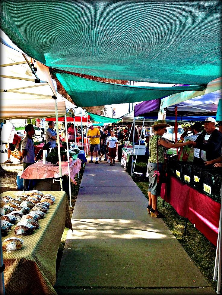 17 best images about az markets on pinterest mesas for Fresh fish shop near me