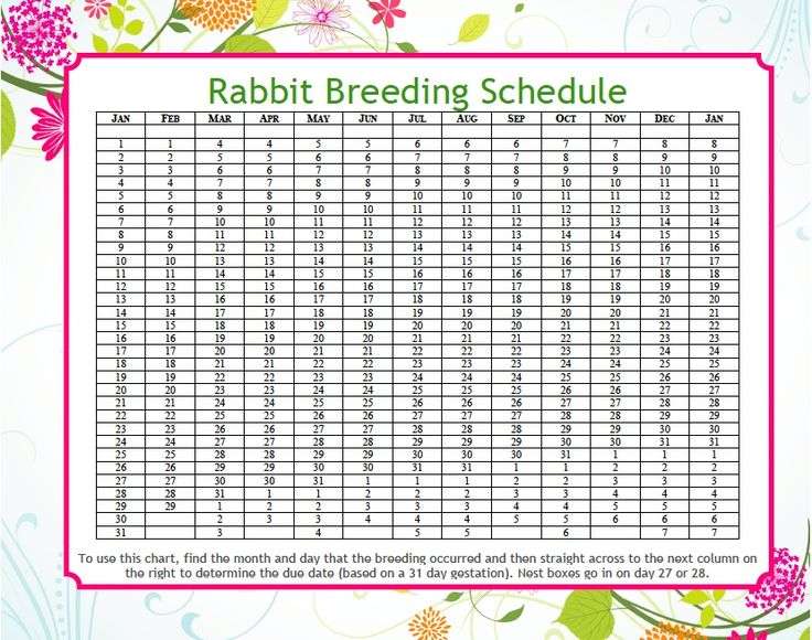 I've discovered it's pretty helpful to be able to count the days of your rabbits gestation. I recently came across this tool that could be useful for you. Print it out and keep it with your records...