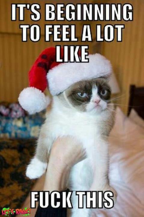 26 best Merry fucking christmas images on Pinterest   Christmas ...