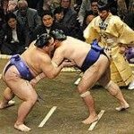 Sumo Wrestling, a traditional Japanese sport