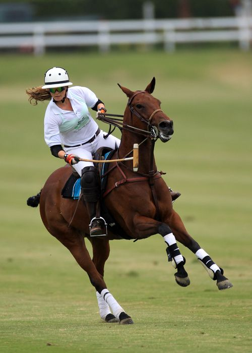 186 best images about horse riding on pinterest for Santa barbara polo shirt