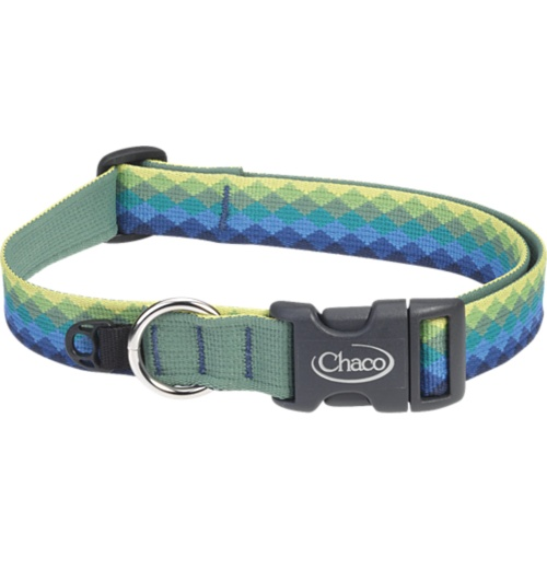 well, actually, pikchu needs this.: Chaco Dog, Dogs, Dog Collars, Doggie Stuff, Doggy Things, Chaco Collar, Chaco Rockcreek, Collar Chaco, Friend