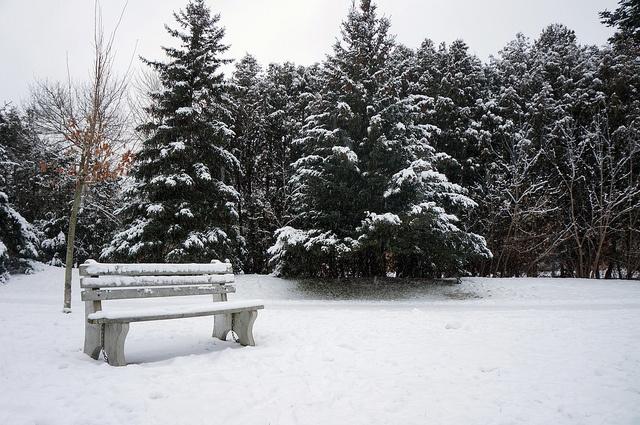 Goldie Mill Park