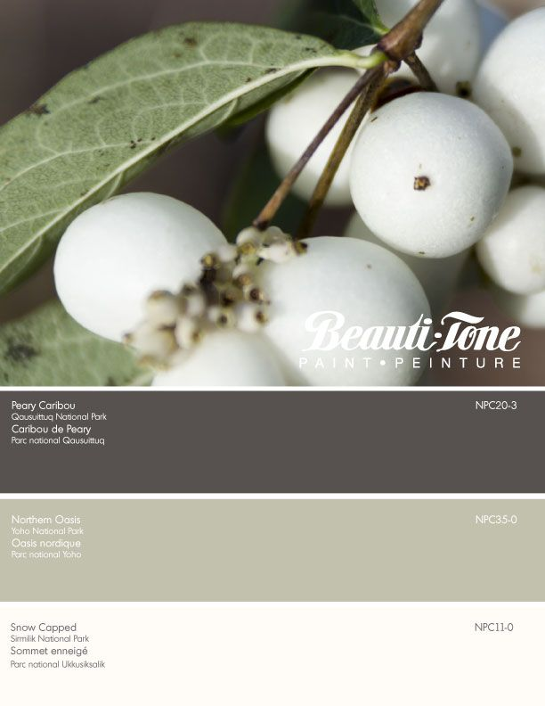 Beauti-Tone offers a tranquil palette of soft green, delicate snow white, accented with the deepest richest brown, inspired by the beauty of fall snowberries. Nature at its best.