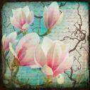 Tavla med magnolia och text. Modern härlig tavla med turkos, rosa