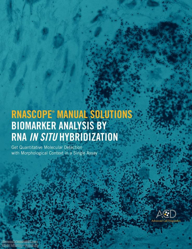 #BiomarkerAnalysis By Rna In-Situ Hybridization