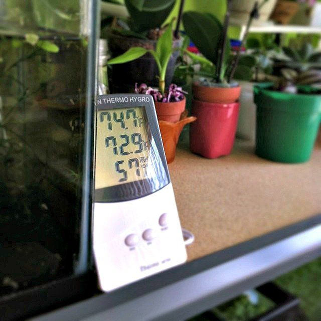 Using a hygrometer to measure humidity levels indoors. photo by max_wei on Flickr