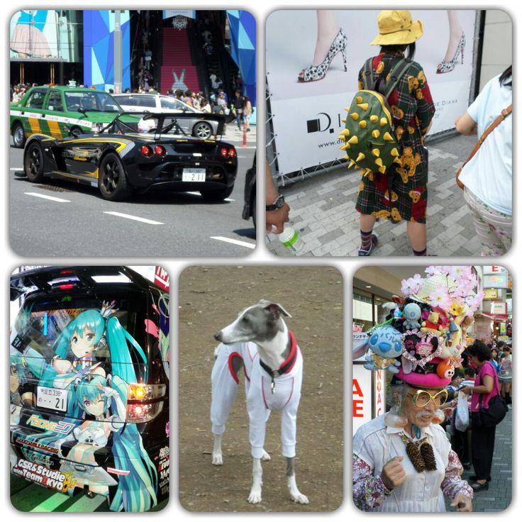 TOKYO- JAPAN httpamantesdeviagens.com