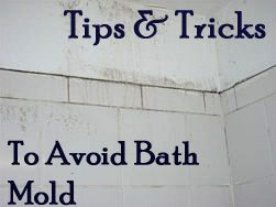 Helpful tips to remember: 1. Clean the bathroom with eco-friendly mold-preventing cleaners like Concrobium or Moldzyme. 2. Painting the walls with semi-gloss paint makes them more resistant to mold growth.