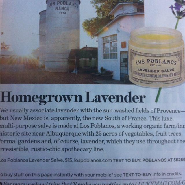 Homegrown lavender... My favorite scent.