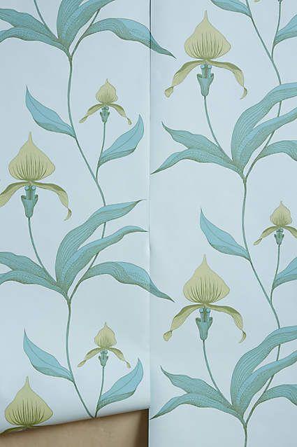 die besten 25 orchid wallpaper ideen auf pinterest rosa tiere sch ne schmetterlinge und. Black Bedroom Furniture Sets. Home Design Ideas
