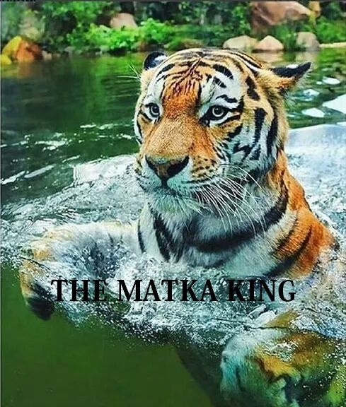The Matka King