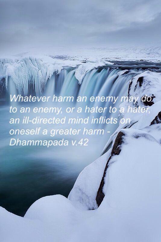 Dhammapada v.42 Theravada Buddhism...an ill-directed mind