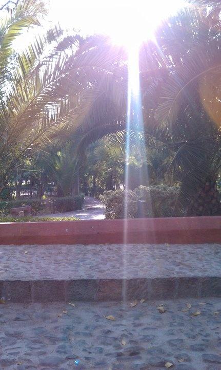 parque frances San Miguel de Ayende Gto. Mexico