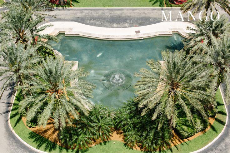 #ideas #tropical #palmtrees #fountain #water #outdoors #ceremony #decor #location #wedding #weddingday