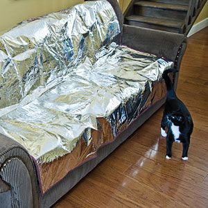 But Not Exactly Pretty Pet Repeller Furniture Pad No Need To Keep Your Cat Or Dog Out Of The Living Room Pets Sound Look