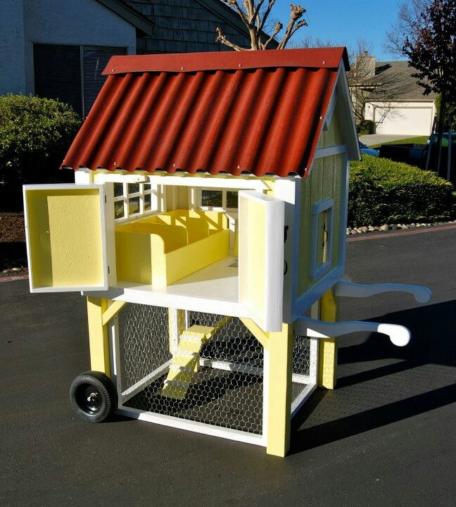 an amazing chicken coop by harris pet house design check out their website for more
