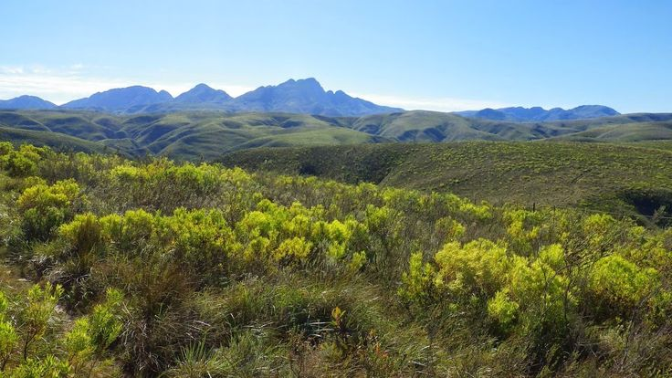 Cockscomb mountains, Eastern Cape (photo Rudi Goossens)
