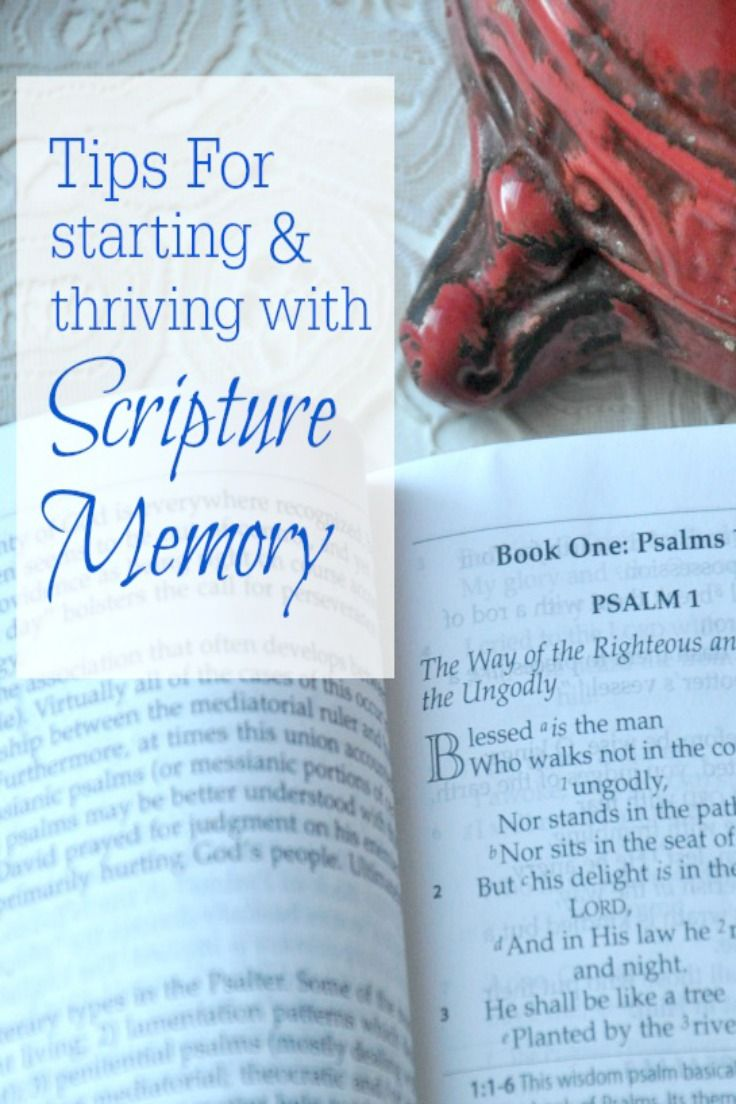 The Memorization Study Bible - Master Books