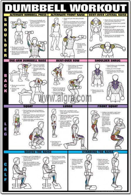 Basic Workout Routine Men