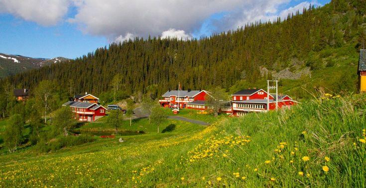 Valdres & Jotunheimen - fjell og gourmet