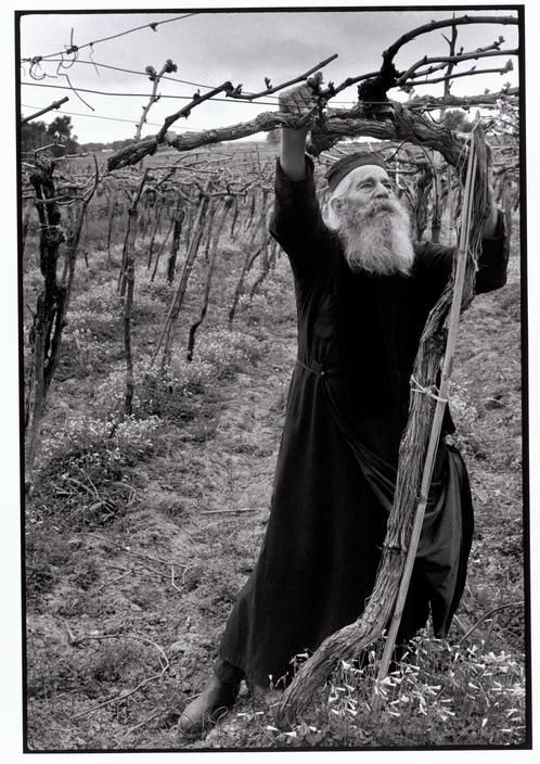 Constantine Manos  Greece. Crete. 1964. Priest tending his vineyard.www