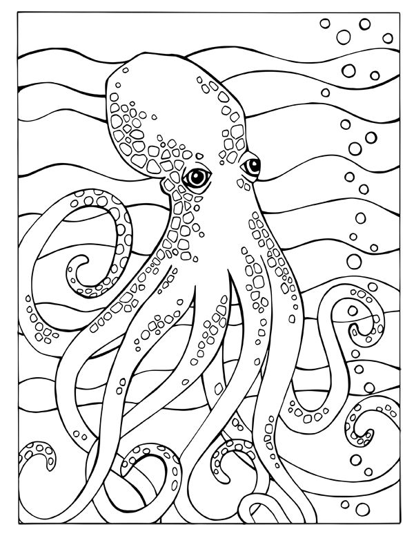 Fortuna Coloring Book Octopus Page
