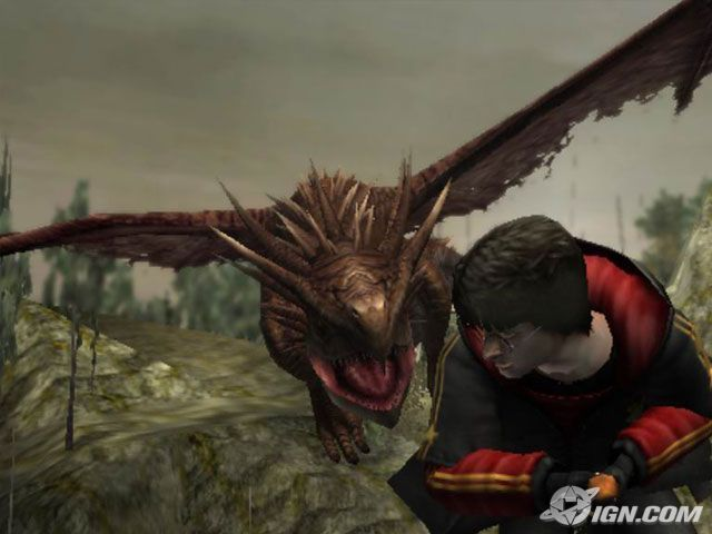 Harry Potter and the Goblet of Fire Game Screenshots