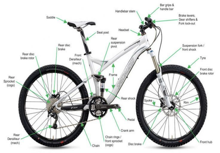 How To Buy Your First Mountain Bike With Images Riding